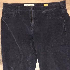 Pilcro and the Letterpress Corduroy Jeans